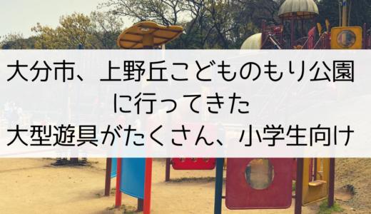 大分市、上野丘こどものもり公園に行ってきた!大型遊具がたくさん、小学生向け