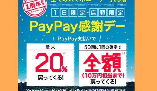 PayPay利用で20%還元(^^♪消費税増税はPayPay利用で節約!