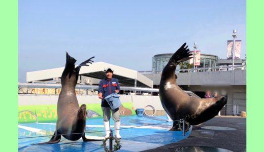 大分県の水族館うみたまごの楽しみ方を徹底解説!1日で満喫できる回り方も紹介。